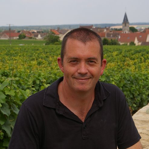 UK - Jamie Goode's Wine Blog