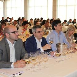 IV Jornada Diam (Espagne) : Mujer y Vino